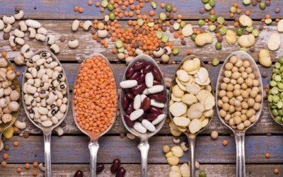 Devenir végétarien; par où commencer ?